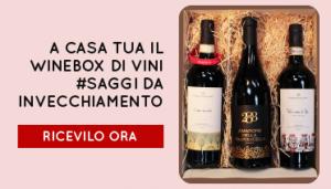 Winebox Saggio vini invecchiati Provalo ora